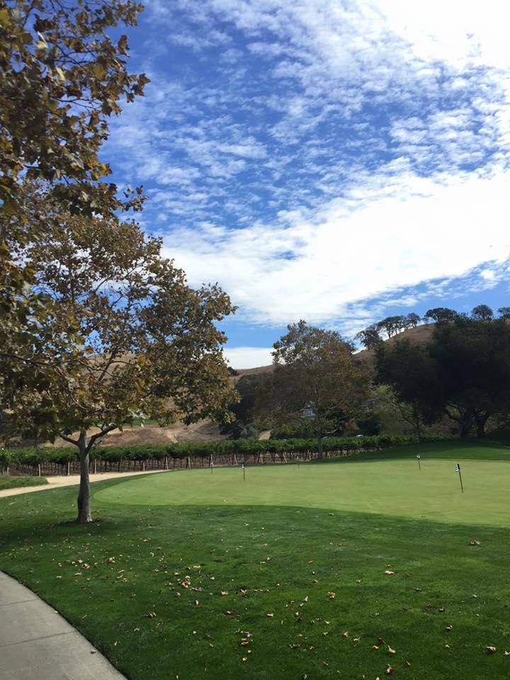 ゴルフ場の後ろに畑