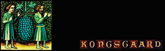 kongsgaard-top