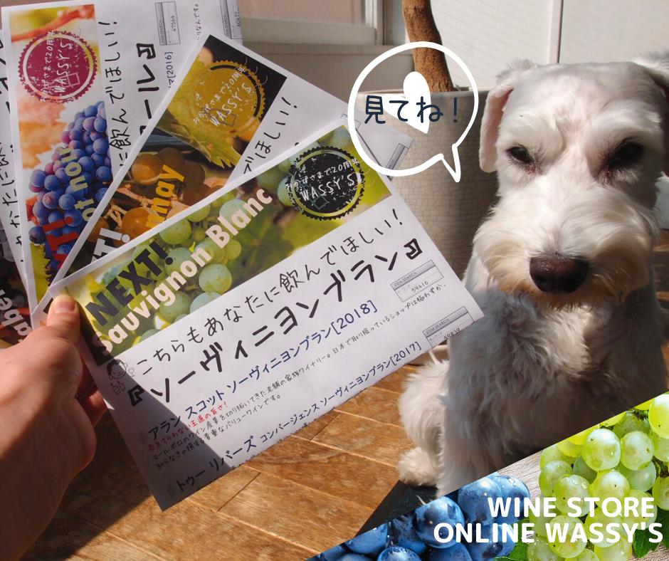 品種別おすすめワイン チラシ