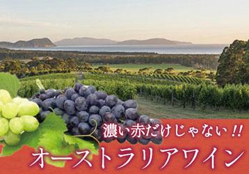 オーストラリアワイン オンラインワッシーズ