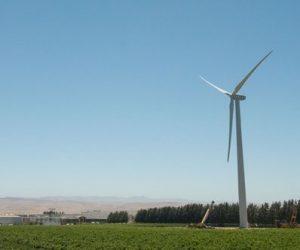 カリフォルニアワイン シャイド ヴィンヤーズ サスティナブル 風力発電